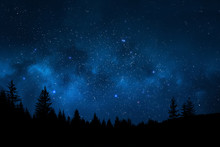 Night Sky With Trees