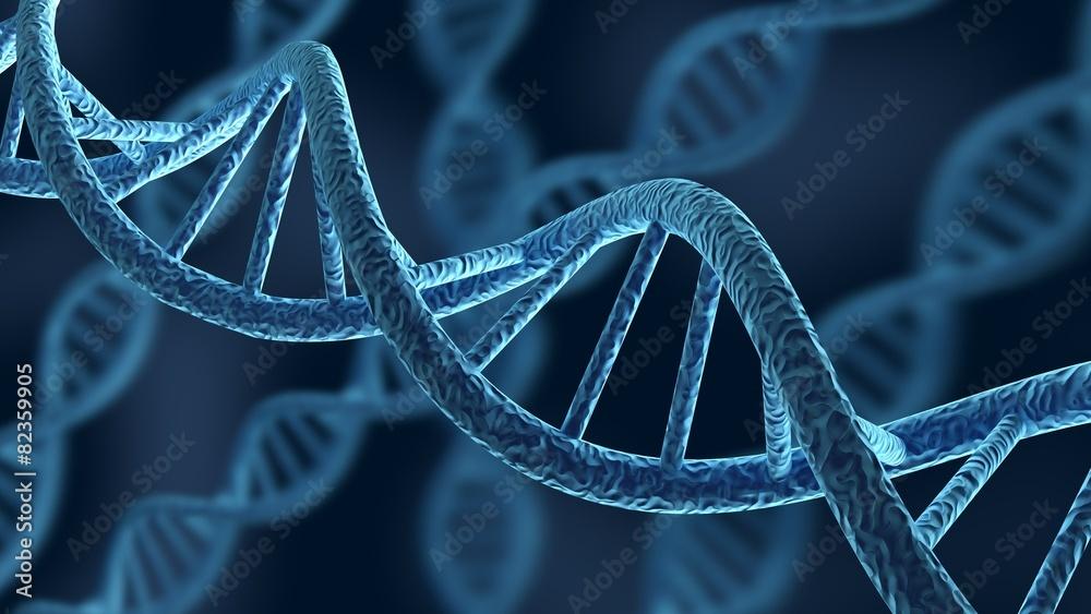 Fototapeta DNA. 3D. DNA Strands