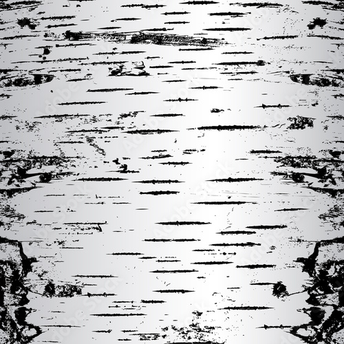bark of birch in the cracks texture. Vector illustration. Fototapeta