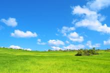 Bella Prateria Verde Con Cielo Azzurro E Nuvole - Pianeta Verde