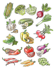 Naklejka color vegetables
