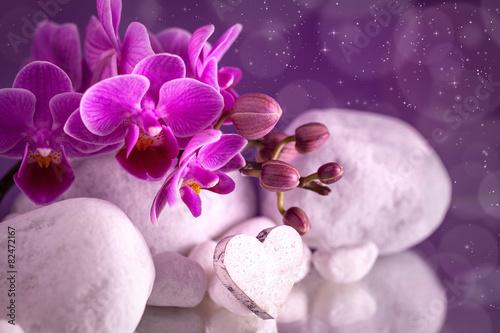 Poster Waterlelies Orchidea love