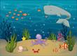 Bunte Unterwasservielfalt
