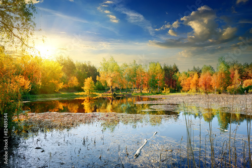 Yellow autumn on river
