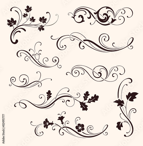 Obraz Set of calligraphic floral elements - fototapety do salonu