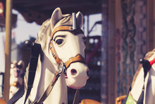 Close Up Of Carousel Horse. Vi...