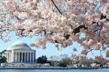 Washington DC, Thomas Jefferso...