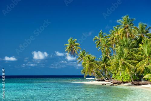 Staande foto Eiland einsamer Strand mit Palmen auf den Malediven