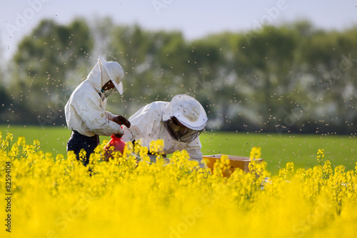 Apiarists in rapeseed field Canvas Print