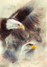 Beautiful Painting Of Two Eagl...