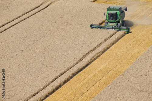 Tuinposter Platteland Combine harvester, harvesting wheat in rural field