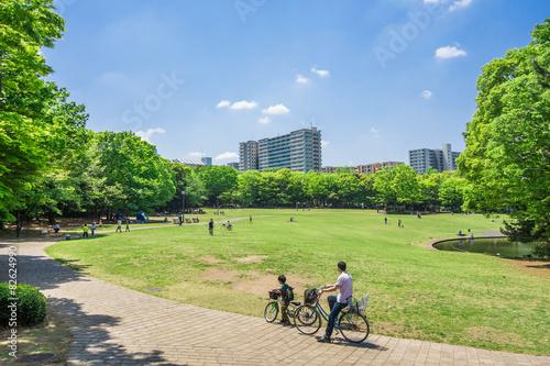 Fotografía  新緑の公園