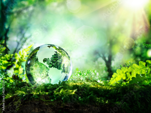 In de dag Natuur crystal globe on moss in a forest - environment concept