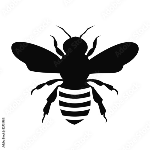 Photo  Black Bee Silhouette isolated on white background - illustration