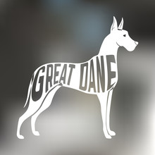 Creative Design Of Great Dane Breed Dog Silhouette On Colorful