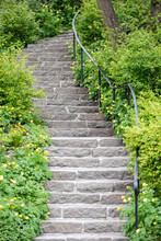 Stone Stairs At A Green Garden...