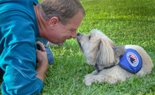 Older Man Sharing A Precious Encounter With His Service Dog