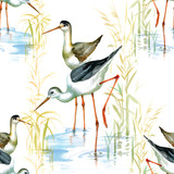 Stork seamless pattern watercolor