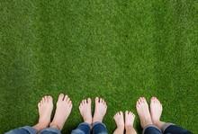 Family Legs Standing On Green ...