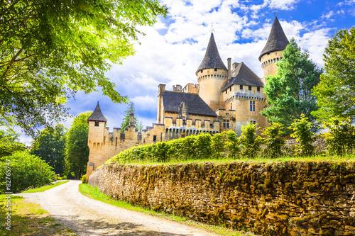 Foto op Plexiglas Kasteel most beautiful castles of France - Puimartin,Dordogne