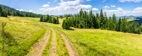 path through meadow to forest in mountain - 82768760