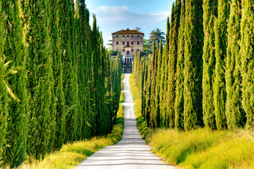 Fototapeta Toskania country road with cypresses, Tuscany