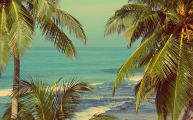 Fototapetasea landscape with palms - vintage retro style
