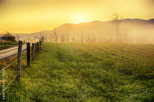 Foggy Landscape in the Great Smoky Mountains National Park