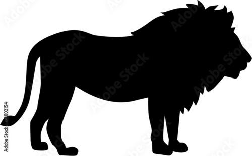 Photo Lion silhouette