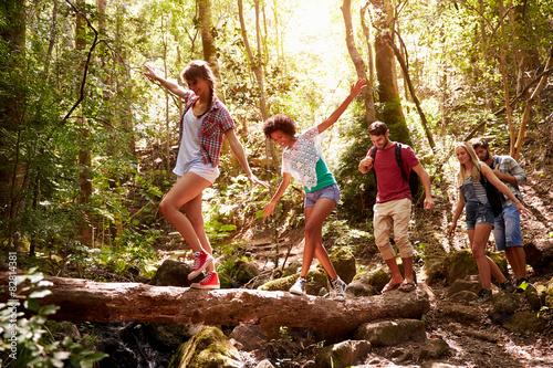Fototapeten Wald Group Of Friends On Walk Balancing On Tree Trunk In Forest