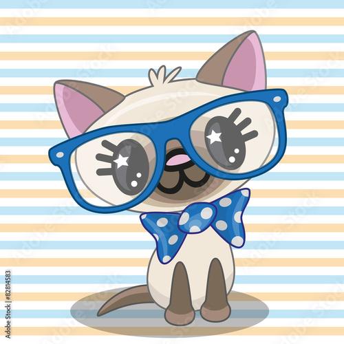 fototapeta na ścianę Hipster Cat