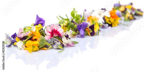 Fotografie, Obraz  Mix edible flower salad in a blue single pot
