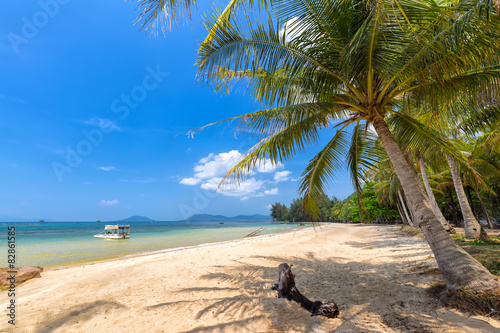 Cadres-photo bureau Palmier Coconut tree on the sea Phu Quoc, Vietnam