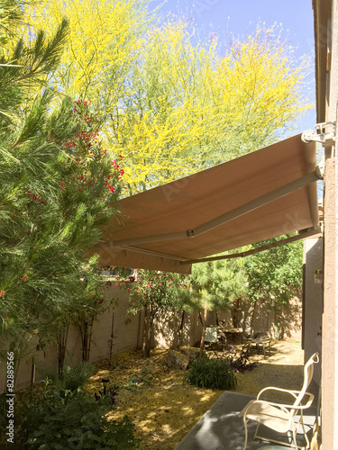 Fotografie, Obraz  Extended awning in Arizona backyard with blooming Palo Verde