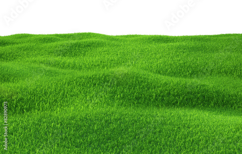 Foto auf Gartenposter Hugel Green grass growing on hills with white background top view