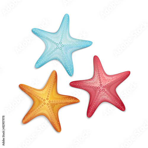 Fotografie, Obraz  Starfish isolated on white background