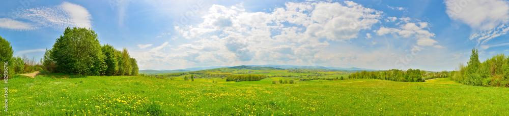 Fototapety, obrazy: Spring countryside