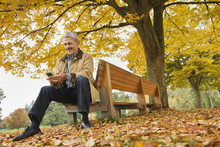 African Man Using Cell Phone On Park Bench In Autumn