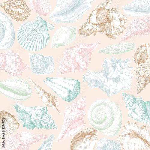 Seashells frame