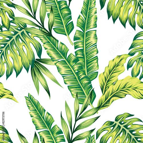 tropikalne-liscie-na-bialym-tle