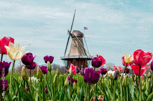 Holland MI Windmill Canvas-taulu