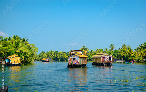 Houseboats in the backwaters of Kerala, India Canvas Print