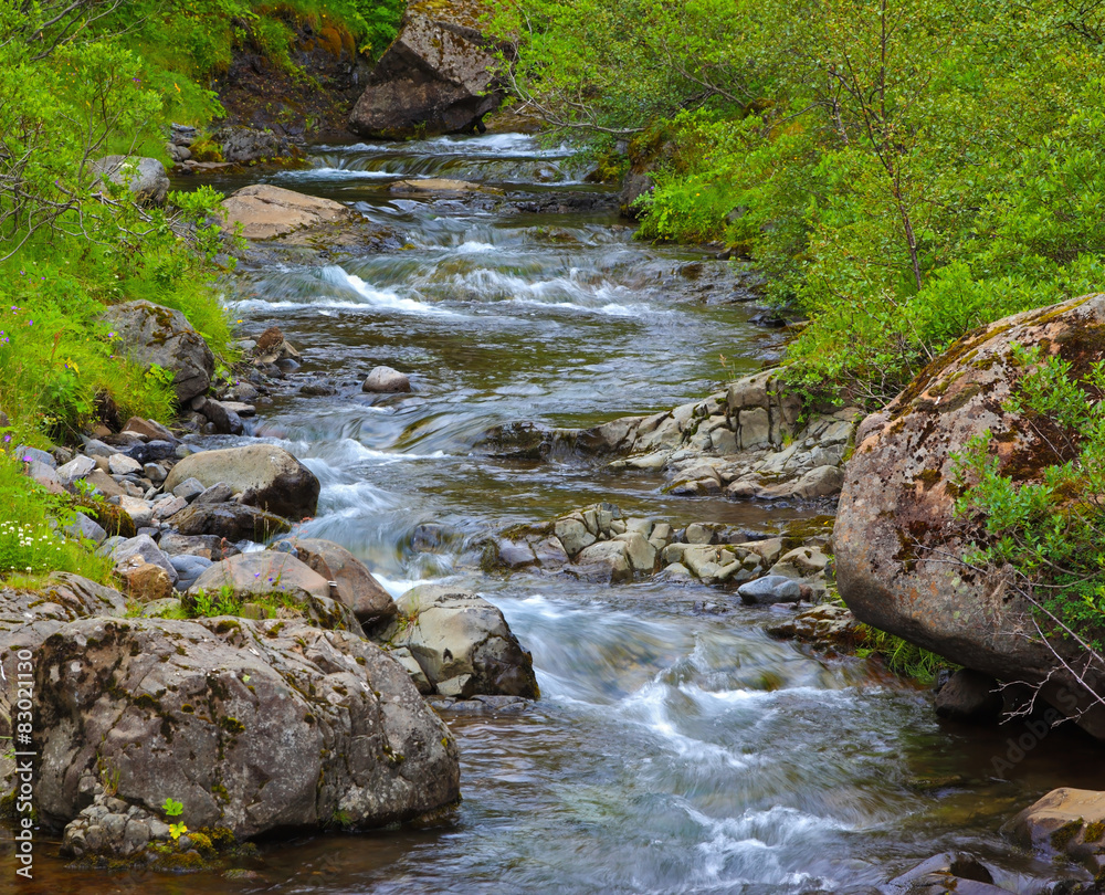 Fototapeta Quick creek in mountains on sunny day