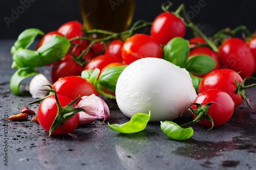 Fotografie, Obraz  Concept of italian food with mozzarella, tomato and basil