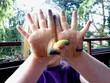 Kleines Mädchen mit farbigen Händen nach malen
