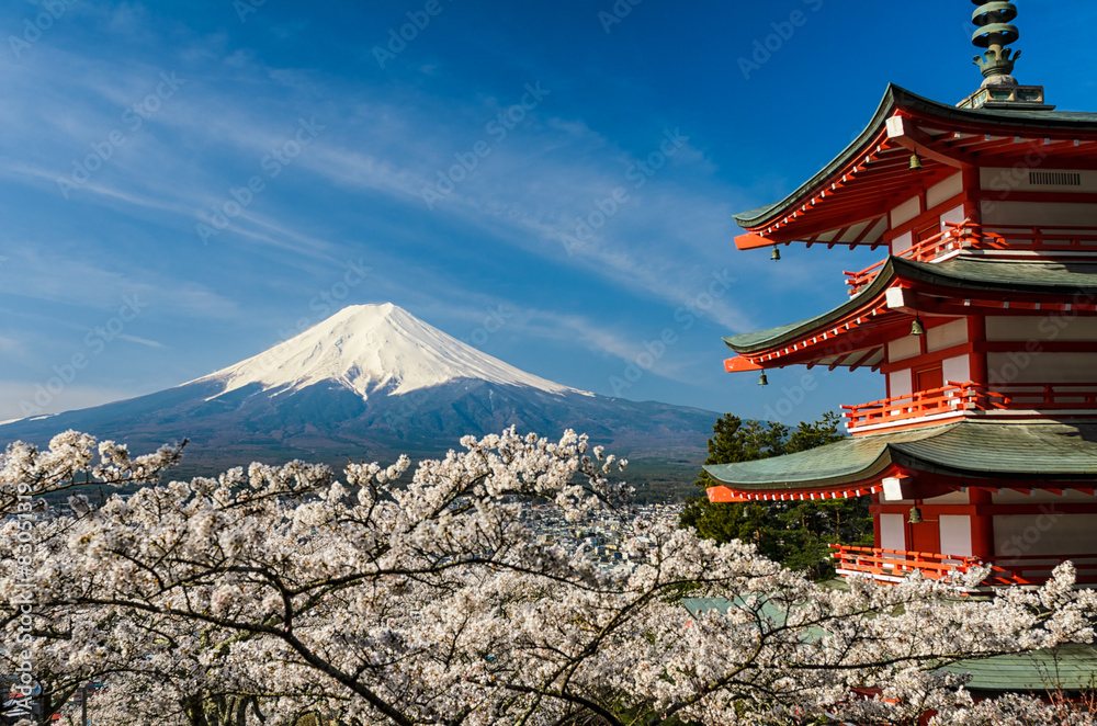 Fototapeta Mount Fuji with pagoda and cherry trees, Japan