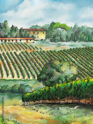 Fotobehang Olijf Vineyard landscape