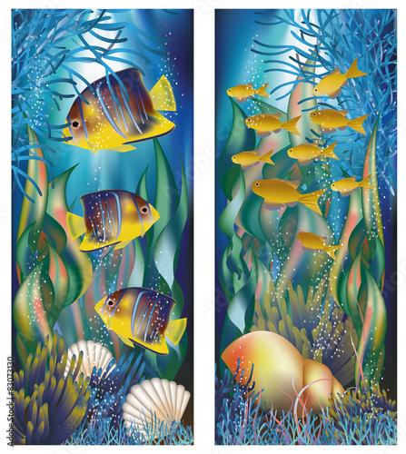 podwodne-banery-z-muszli-i-tropikalnych-ryb-wektor