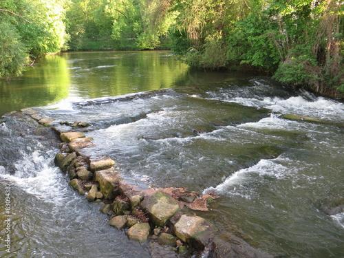 Foto op Canvas Bos rivier Reißende Regnitz