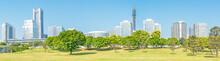 Landscape Park Prospects The Yokohama Minato Mirai 21 Buildings